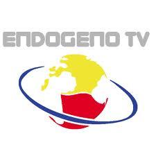 Endogeno TV