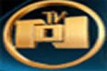NTV 101